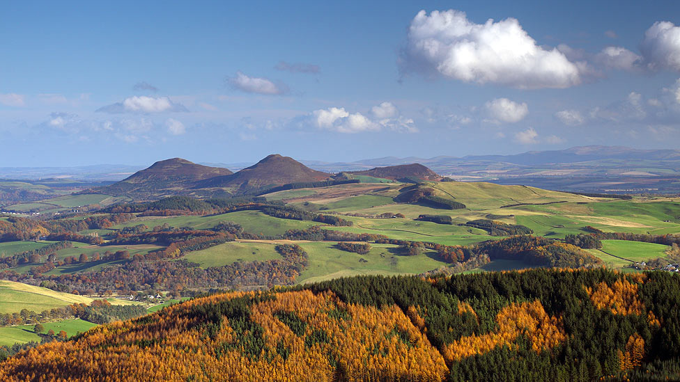 Fall - Eildon Hills
