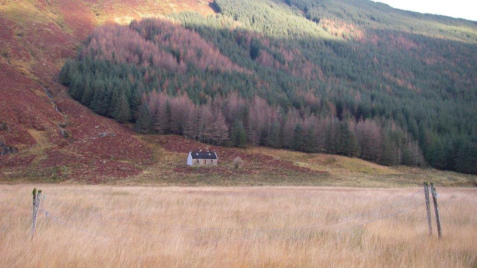 Fall - Glen Pean Bothy