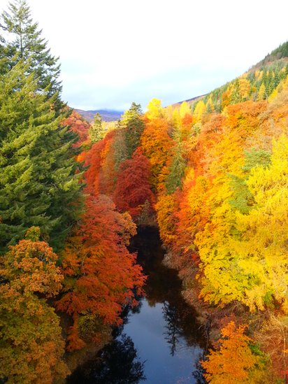 Fall - River Garry