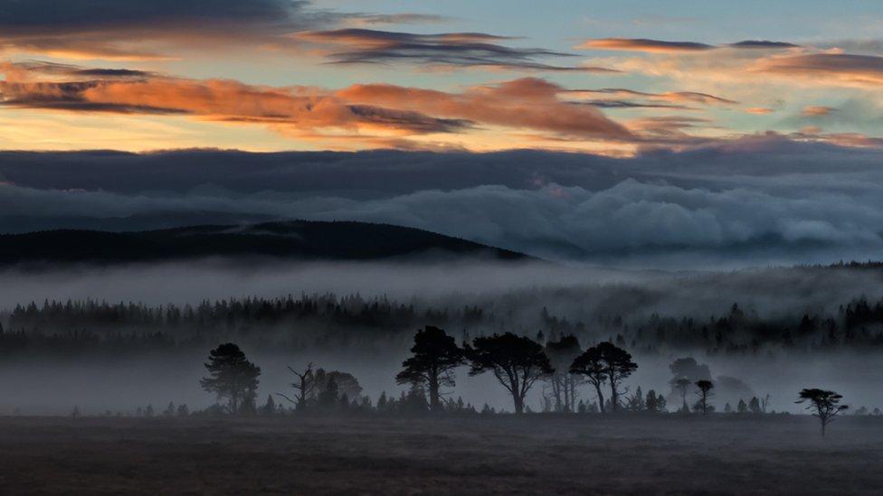 Fall - Sunrise over Carrbridge