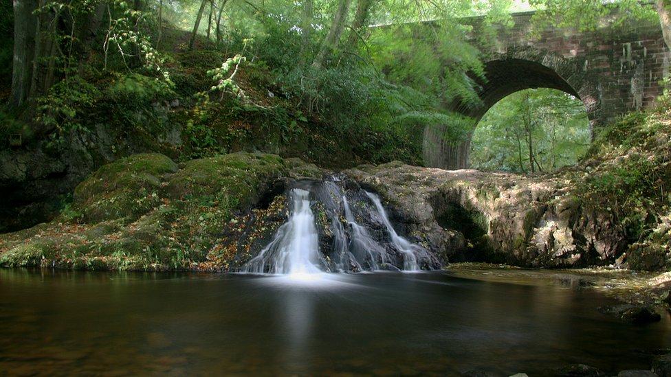 Fall - Falls of Arbirlot