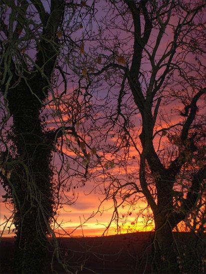Winter - Inverebrie, Ellon