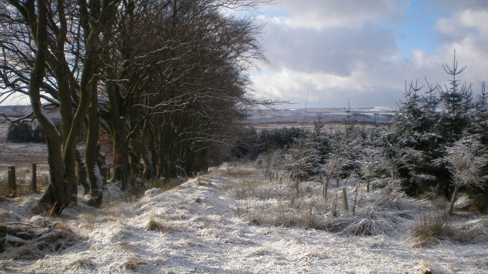 Winter - Longformacus near Duns