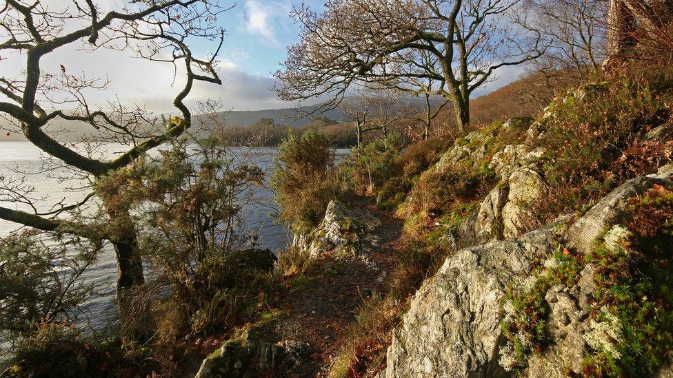 Winter - Sallochy, Loch Lomond