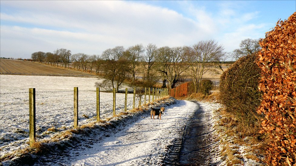 winter - near Scone