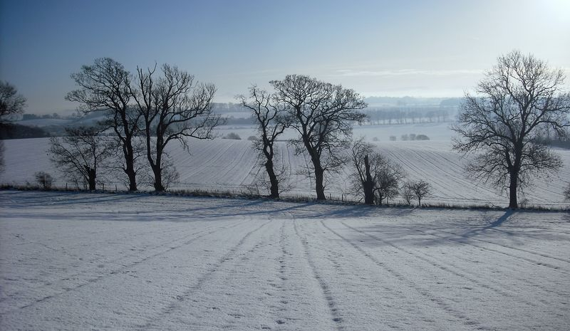 Winter - view to Dunfermline