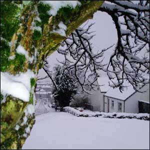 Winter Kilsyth