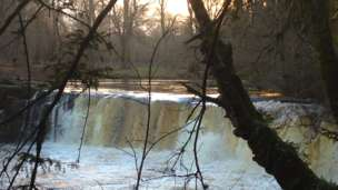 Winter floods - Linn Park, Glasgow