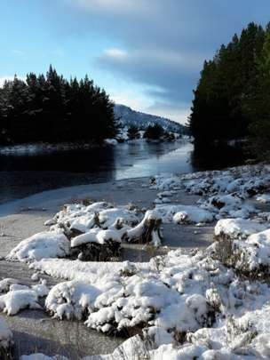 Winter in Rochiemurchus forest, Aviemore