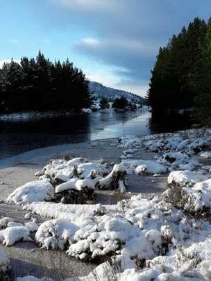 Winter in Rochiemurchus forest, Aviemore