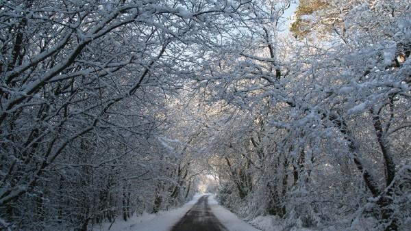 Winter - High Lochenbreck, Dumfries & Galloway