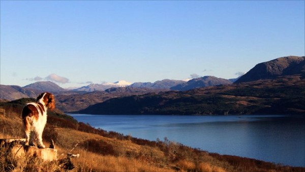 Winter - Letir Fura with Knoydart in background