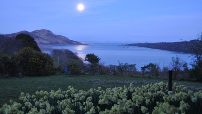 Spring - Arran's Holy Isle