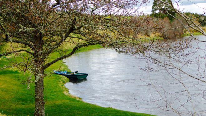 Spring - Cromdale