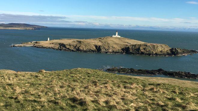 Spring - Little Ross Island, Kirkcudbright