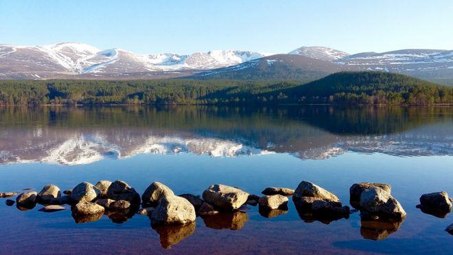 Spring - Loch Morlich
