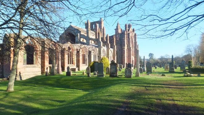Spring - Melrose Abbey