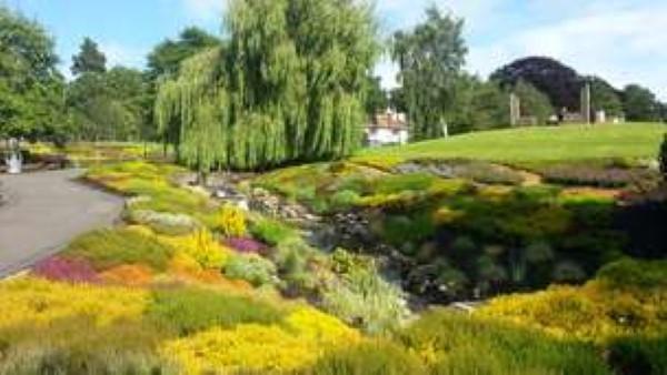 Summer - Heather garden in Rodney Pavillion