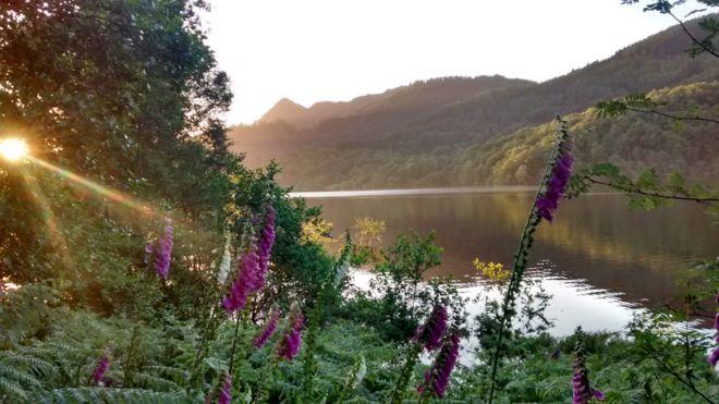 summer-loch_achray