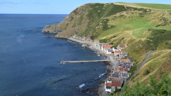 fall-crovie
